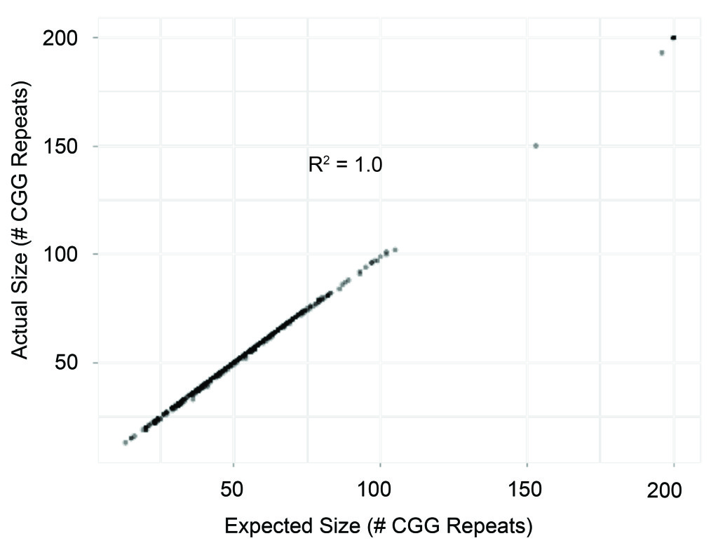 Expected-size-CGG-repeats_Fig41-1024x774